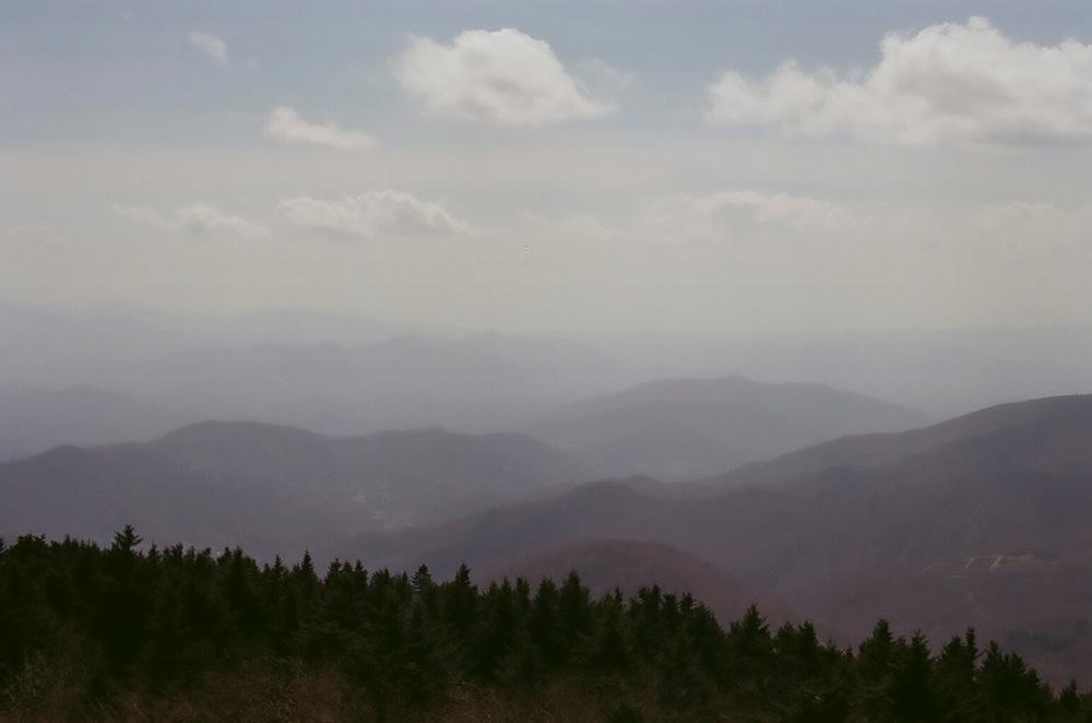Roan_Mountain_1